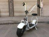 Scooter électrique de remplissage Citycoco de Harley de scooter électrique de conformité et de temps 6-8h de la CE