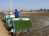 2acg - repicadora del arroz del montar a caballo de Kubota de 6 filas