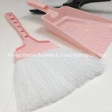 Щетка домочадца и щетка чистки Dustpan установленная