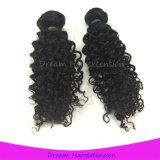 Unverarbeitete Menschenhaar-Extensions-verworrenes lockiges Großhandelsjungfraumalaysian-Haar