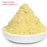 100%の純粋なスパイスのショウガの粉