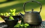 Extrait de thé vert d'approvisionnement stable de constructeur/poudre d'extrait de thé vert