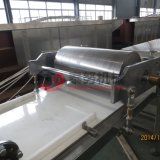Tn 800 de Staaf die van het Graangewas Muesli Machine voor Verkoop maken