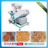 곡물 색깔 Fotosorter 의 밥, 견과, 콩을%s 사진 분류하는 사람