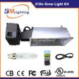 Le ballast d'éclairage de la haute performance 315W CMH Dimmable et élèvent le réflecteur léger pour 315W CMH concurrencent dispositif