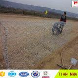 Gabion Box&Gabion Baskets&PVC Gabions für Verkauf