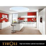 Het Meubilair van de Keuken van de Douane van Premade (AP097)