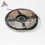 Striscia bianca del chip 30LEDs 7.2W DC24V LED di colore IP20 SMD5050 di alta luminosità