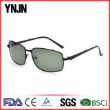 Liga Profissional Sport andar homens Design de óculos de sol (YJ-F8485)