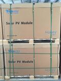 Comitati solari del miele di fama mondiale di marca 260W Trina della fila 1