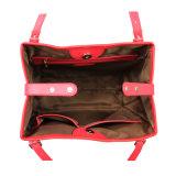 Modèles fonctionnels neufs des sacs à main pour les collections des femmes