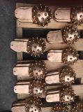 Piezas del trépano de sondeo rotatorio para los dígitos binarios de taladro