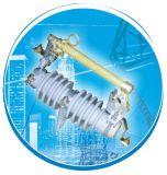 Fusível do isolador RW11-12 / 3 ~ 100, 10 ~ 24kv, Fuse Cutout / Fuse Link / Break Switch Tipo de saída ao ar livre Fusível