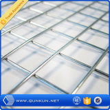 Rete metallica saldata galvanizzata della Cina o PVC ricoperta all'ingrosso
