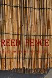 Reed clôture - 2