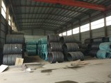못을 만들기를 위한 코일에 있는 중국 제조자 SAE 1006 열간압연 철강선 로드