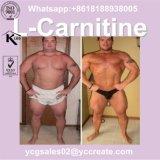 L-Carnitina per perdita di peso, grasso di corpo 541-15-1 di alta qualità