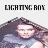 屋内広告の表示LEDライトボックス