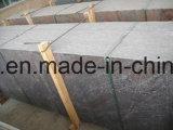 床のための中国Paradiscoの花こう岩そして花こう岩の平板