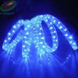 LED 밧줄 빛 (FRL-F4-150-H/L)