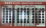 Double-Glazed-Módulos solares Dkm60b/ Painéis Solares (RS-SP60W)