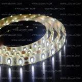 호박색 12VDC SMD3528 60LEDs/M 유연한 LED 지구 빛