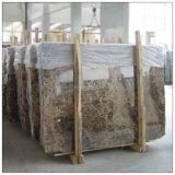 熱い販売花こう岩及び大理石の平板/タイル