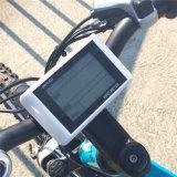 Bicicleta elétrica Foldable popular 250With350W (RSEB-106)