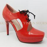 Chaussure de robe de Madame Fashion (YMD0021006-1)