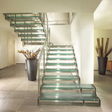 Случай лестницы стеклянной деревянной лестницы/твердой древесины