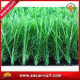 Erba artificiale del tappeto erboso per il passo del grillo