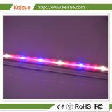 Keisue LED Fábrica de las plantas crecen con la luz de espectro completo