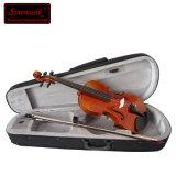 Viola profissional Handmade do instrumento musical de 100%