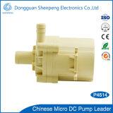 mini pompe à la maison d'épurateur de l'eau de C.C de 12V 24V avec le flux 9L/Min de la tête 5m