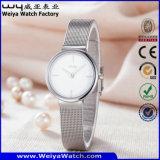 Relógio de senhoras ocasional impermeável de quartzo da cinta de couro da forma (Wy-062B)