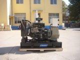 Il servizio dell'Argentina ha usato il tipo aperto insieme di generazione diesel di 15kw