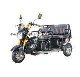 3つの車輪の大人の人力車の乗客の電気三輪車