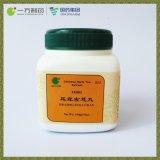 Antideaf Tang Ótica (extrato de chá de ervas Chinês)