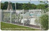 Projeto exterior das cercas de segurança do ferro feito