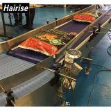 Hairise avec ce système de convoyeur de droite pour les aliments et boissons l'industrie