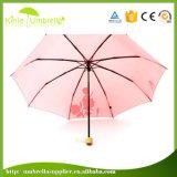 [هيغقوليتي] دليل استخدام مفتوحة [3-سكأيشن] يطوي مظلة