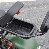 Rückseiten-Aufhebung der Vorderseite-1000W60V neues Citycoco Harlley zwei Rad-elektrischer Roller/billig elektrisches Trike /E-Bicycle