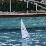 Barco fresco da melhor qualidade barata RC da forma para o menino