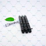 Diesel van de Nevel Ejbr01801A Delphi van de Injecteur van Erikc Originele Injecteur Injecteur van de Pijp van het Spoor R01801A (8200365186) en Ejbr0 1801A van Ejb de Gemeenschappelijke Directe