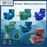 Alternadores del generador de potencia del dínamo de la CA de la potencia del cepillo de la STC del St