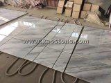 Het natuurlijke/Opgepoetste Wit van China/Witte Marmeren Tegel Guangxi voor Vloer