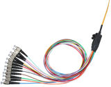 Cuerdas de corrección de fibra óptica
