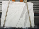 [فولكس] بيضاء/لوح رخاميّة لأنّ مطبخ/غرفة حمّام/جدار/أرضيّة