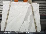 Volakas weiße/Marmorplatten für Küche/Badezimmer/Wand/Fußboden