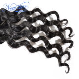 Unprocessed естественное мягкое Weft индийское свободное выдвижение человеческих волос волны